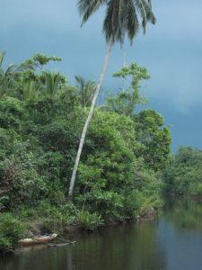 Quiet-backwater